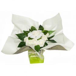 Bouquet original de chaussettes : blanc