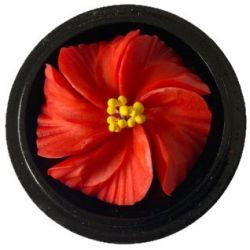 Fleur de savon sculptée: Hibiscus rose