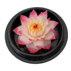 Fleur de savon sculptée: nénuphar kdo parfait